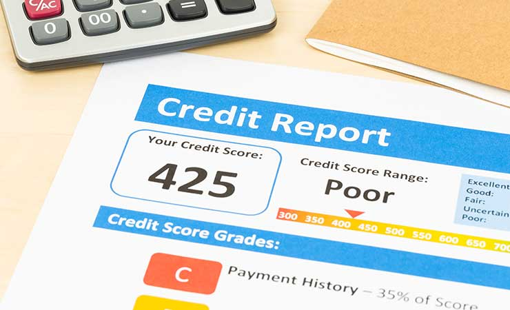 Credit report for insurance